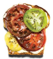 the tomato sandwich